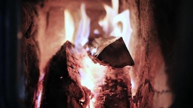 roasted_lamb_article_july-_intro SPRICH AUS, WAS DU SEHEN WILLST