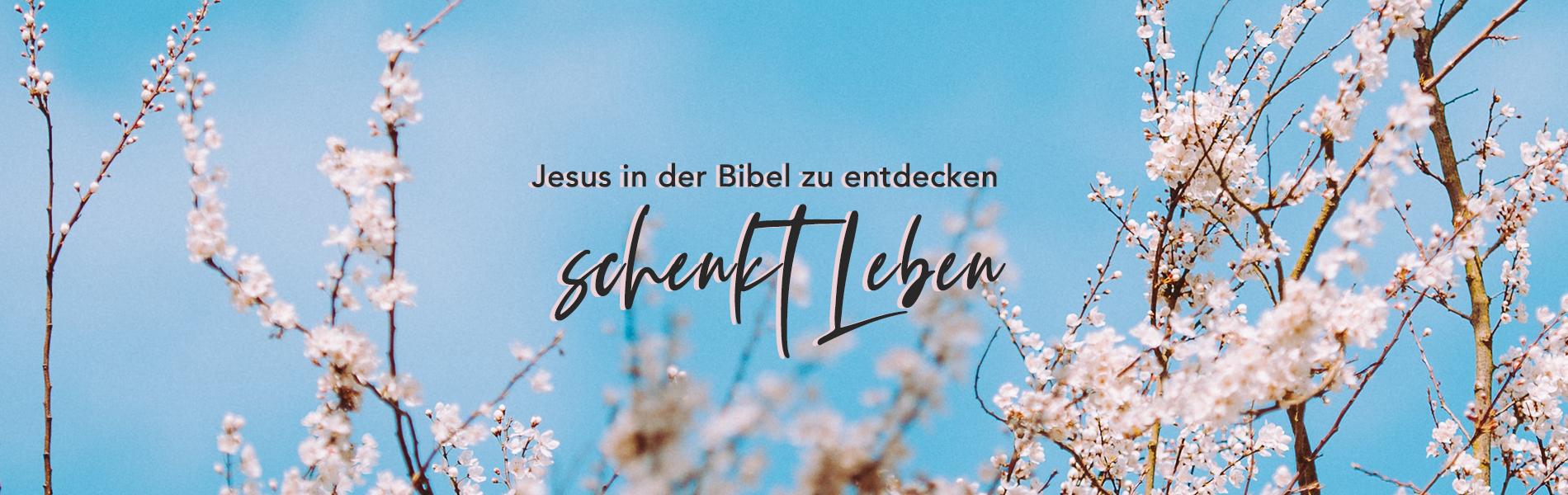 03_Mar_Seeing-Jesus_DE Home | New Creation TV