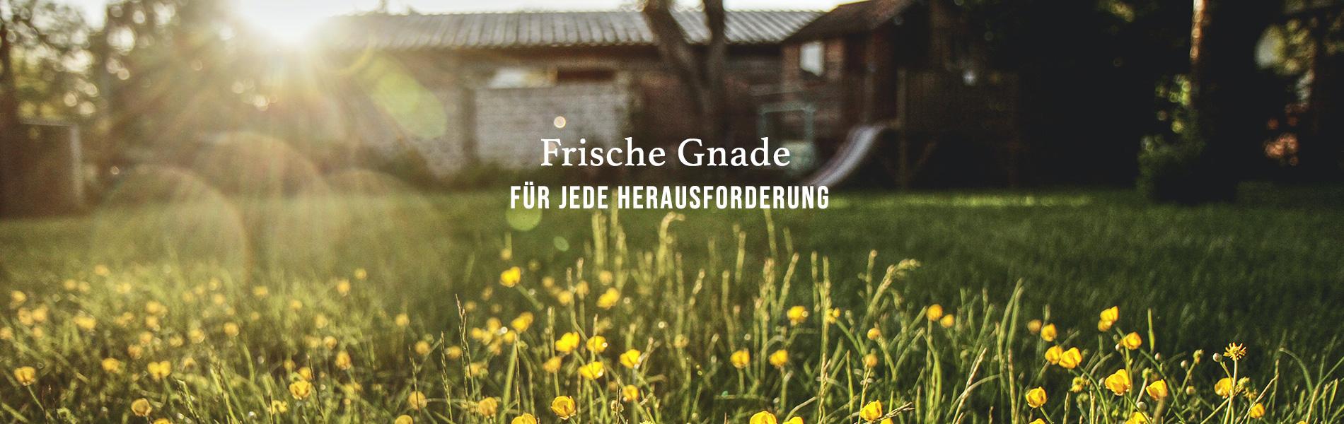 Jul_Fresh-Grace_DE-v2 Home | New Creation TV